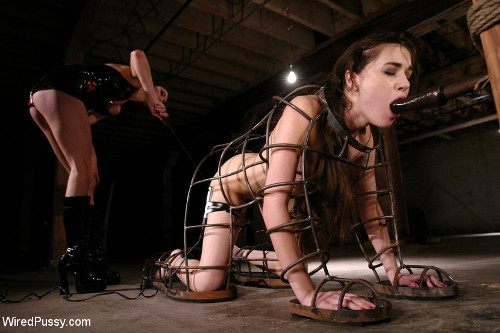 bound machine orgasms